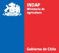 logo_indap